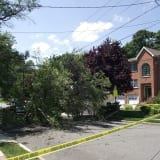 Downed Tree Limb Yanks Down Wires, Blocks Hawthorne Street