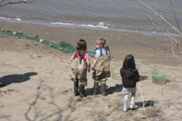Register your child to help the Kathryn W. Davis RiverWalk Center count fish and learn about aquatic life in the Hudson River.