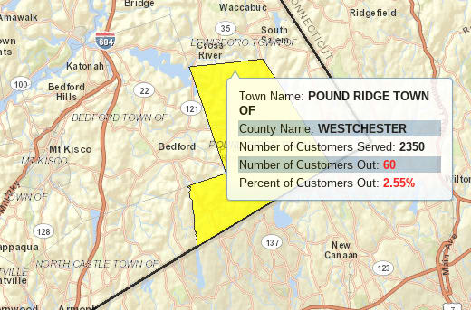 A windy snow and rain storm knocked out power to some of Pound Ridge Wednesday night.